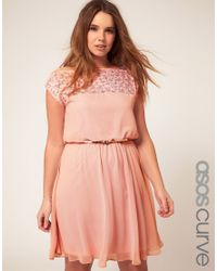 b259a485028 Lyst - ASOS Asos Curve Skater Dress with Daisy Lace in Pink