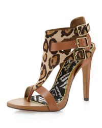 Sam Edelman | Natural The Lucia Sandal in Nude Leopard and Saddle | Lyst