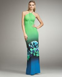 Roberto Cavalli - Multicolor Floral-print Halter Gown - Lyst