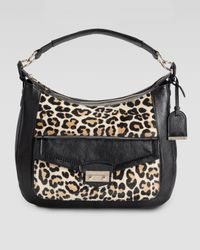 Cole Haan | Multicolor Zoe Leopardprint Calf Hair Hobo Bag | Lyst