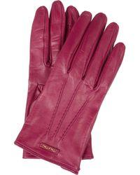 Miu Miu   Purple Leather Gloves   Lyst