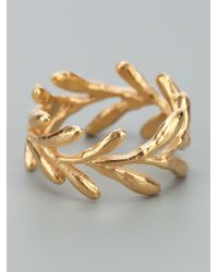 Catherine Weitzman - Metallic Gold Aloe Ring - Lyst