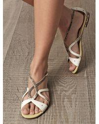 Alexandre Birman Gray Watersnake Sandals