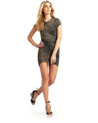 Torn By Ronny Kobo - Multicolor Kaitlyn Cheetah Dress - Lyst