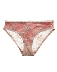 Stella McCartney | Pink Stella Mccartney Stella Lace Bikini | Lyst