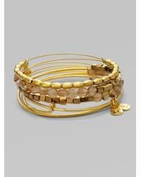 ALEX AND ANI - Metallic Expandable Wire Bracelet Setsand - Lyst