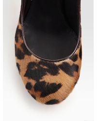 B Brian Atwood - Black Pangea Leopard Print Calf Hair Pumps - Lyst