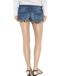 Just Cavalli - Blue Leopard-print Stretch-denim Shorts - Lyst