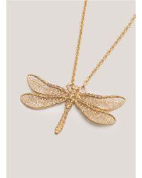 Alexander McQueen - Metallic Dragonfly Skull Necklace - Lyst