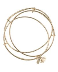 ALEX AND ANI - Metallic Bangles, Set Of 3 - Lyst
