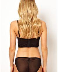 ASOS - Black Von Follies By Dita Von Teese Her Sexellency Bikini Brief - Lyst