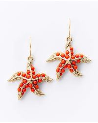 Ann Taylor | Orange Starfish Earrings | Lyst