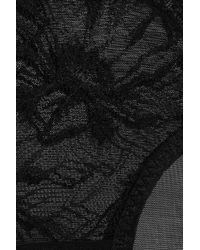 Stella McCartney - Black Jane Snuggling Lace Briefs - Lyst