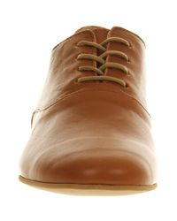 Fly London   Brown Fofi Lace Up   Lyst