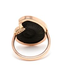 Dezso by Sara Beltran - Pink Rose Gold and Black Fossil Ring - Lyst