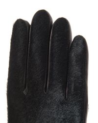 Agnelle - Green Moka Calf Hair and Leather Gloves for Men - Lyst