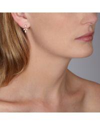 Astley Clarke - Pink Rose Gold Falling Leaf Chandelier Earrings - Lyst