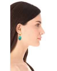 Kenneth Jay Lane - Metallic Turquoise Bead Drop Earrings Satin Goldturquoise - Lyst
