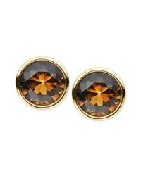 Michael Kors - Metallic Goldtone Smoky Topaz Glass Stone Stud Earrings - Lyst