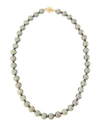 Assael - Gray Tahitian Pearl Necklace 15 - Lyst