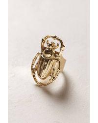 Anthropologie | Metallic Golden Scarab Ring | Lyst