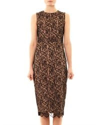 Camilla & Marc | Black Lace Front Fitted Dress | Lyst