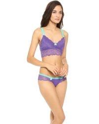 Honeydew Intimates | Purple Claudia Lace Bralette | Lyst