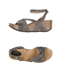 Scholl | Gray Wedge | Lyst