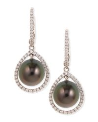 Eli Jewels | Green 18k Gray South Sea Pearl & Diamond Halo Earrings | Lyst