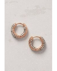 Anthropologie | Pink Twinkled Mini Hoops | Lyst