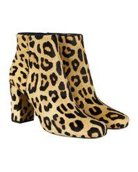 Saint Laurent | Animal Babies Leopard-print Pony Hair Ankle Boots | Lyst