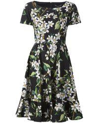 Dolce & Gabbana | Multicolor Floral Print Dress | Lyst