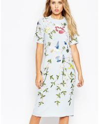 ASOS - Blue Bird And Floral Embroidered Shift Dress - Lyst