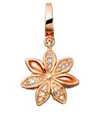 Astley Clarke - Metallic Rose Gold Vermeil Star Anise Aphrodisia Charm - Lyst