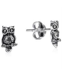 Aeravida - Metallic Petite Awake Owl .925 Silver Stud Earrings - Lyst