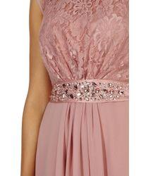 Coast   Pink Lori Lee Lace Short Dress   Lyst