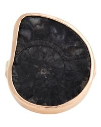 Dezso by Sara Beltran - Pink Fossilized Ammonite Ring-Colorless - Lyst