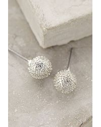 Anthropologie | Metallic Dandelion Posts | Lyst