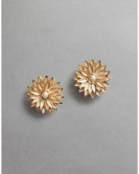 Dolce & Gabbana | Metallic Floral Earrings | Lyst