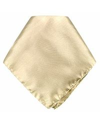 FORZIERI - Natural Beige Silk Pocket Square - Lyst