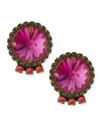 DANNIJO | Purple Bracco Pink Crystal Stud Earrings | Lyst