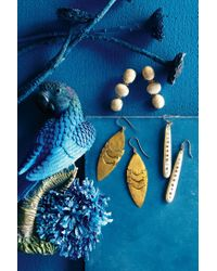 Anthropologie | Natural Tripletta Drops | Lyst