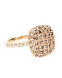 Roberto Marroni - Metallic 18kt Rose Gold Ring With Brown And White Diamonds - Lyst