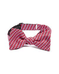 Vineyard Vines - Red 'hummingbird' Print Silk Bow Tie for Men - Lyst