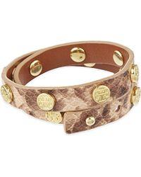 Tory Burch - Brown Logo Stud Bracelet - Lyst