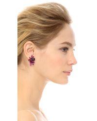 Elizabeth Cole | Multicolor Elson Earrings - Pink Multi | Lyst