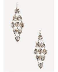 Bebe | Metallic Crushed Crystal Earrings | Lyst