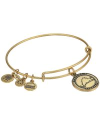 ALEX AND ANI | Metallic Martha'S Vineyard Charm Bangle | Lyst