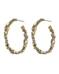 Alexis Bittar | Metallic Golden Ice Hoop Earring You Might Also Like | Lyst