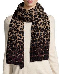 Lanvin - Multicolor Leopard-print Cold Weather Scarf - Lyst